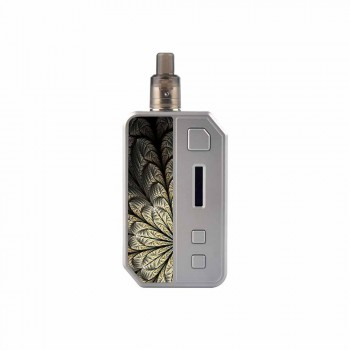 IPV V3 MINI Kit Silver/T3