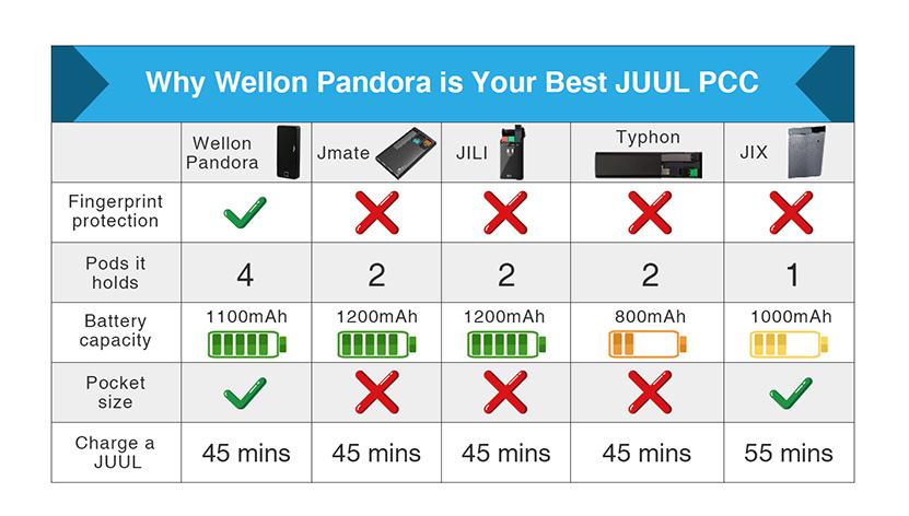 Pandora JULL Portable Charging Case11